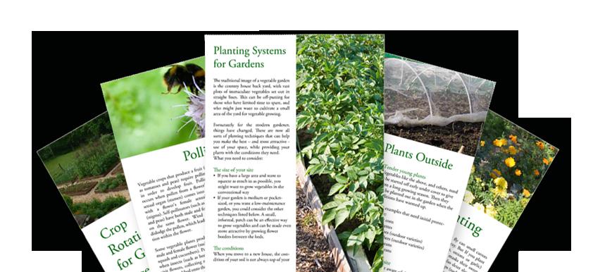 Vegetable Gardening Advice | Veggie Garden Videos and ...